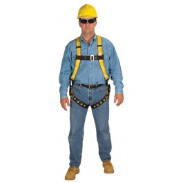 MSA Workman® Harness