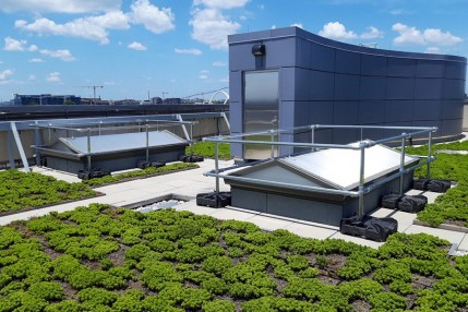 Green roof fall protection