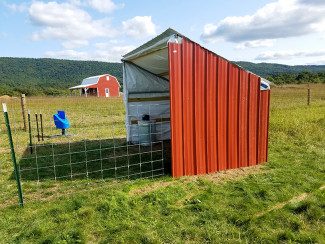 How to Build a DIY Animal Shelter for Barnyard Animals